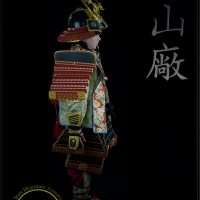 Samurai Armor Costume for Kids