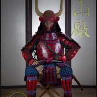 Asian Fully Adjustable Mannequin Display